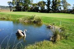 Tarquinia-Golf-Club-8